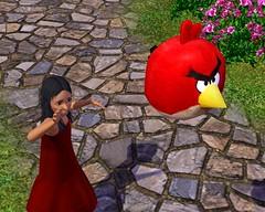 Angry 4