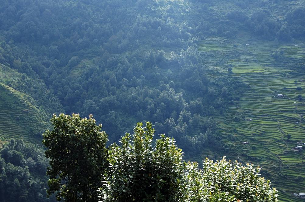 1004_Nepal_020