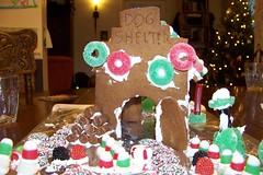 C7 Dog shelter 1