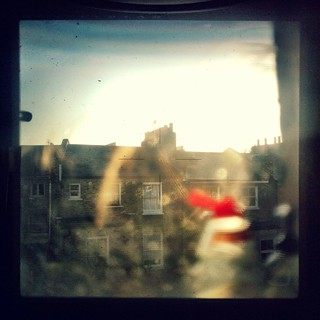 Morning London Through the viewfinder of a Hasselblad