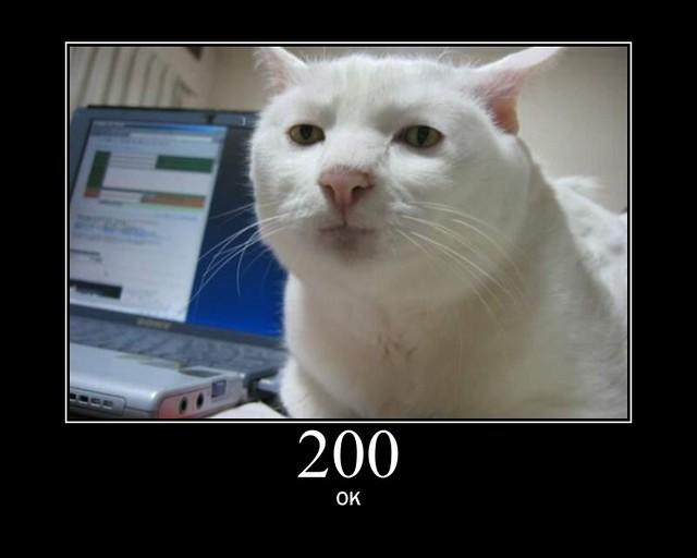 200 - OK