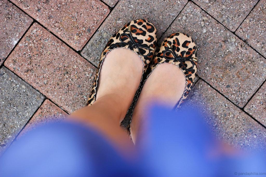 leopard blur