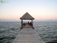 dock on the caribbean in belize