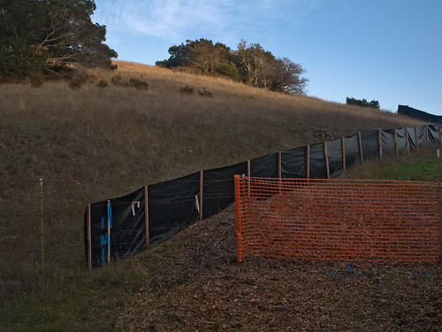 Crystal Springs Reservoir, San Mateo Ca (November 2011)