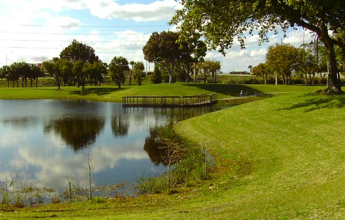 park trees sky urban lake reflection green water clouds reflections landscape pier dock pond florida piers gorgeous south westpalmbeach waterfeature overhang smallwater dreher dreherpark gorgeousgreenthursday ilobsterit