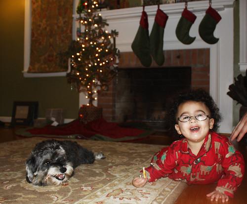 dog + baby christmas