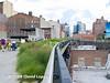 NYC High Line-7026930