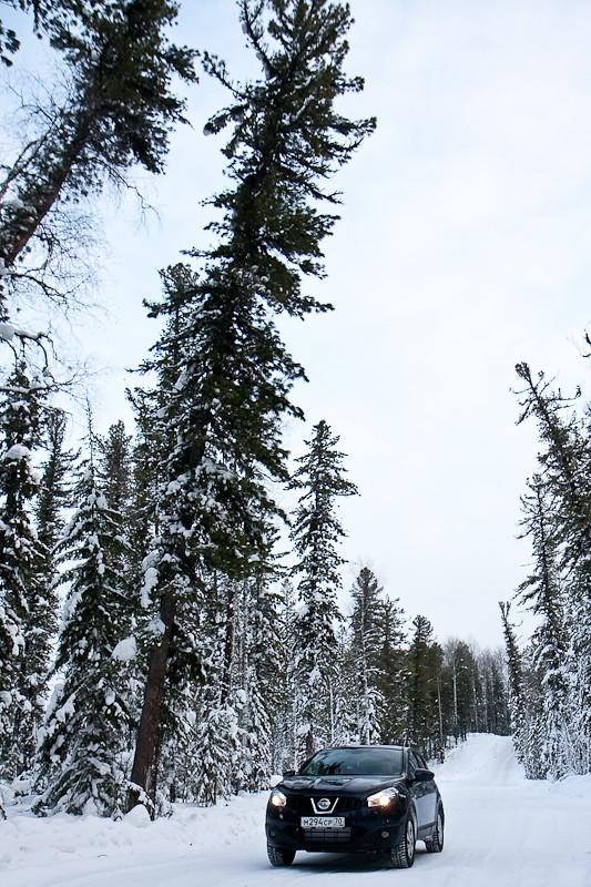 """P.S. мы проехали по зимнику  """"через 86-й км """". На дорогу от Томска до Стрежевого мы затратили 20 часов, из них 280км..."""