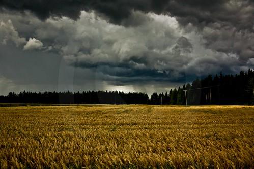 field rain finland tunder