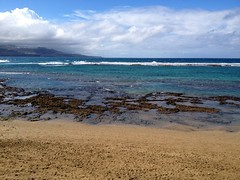 Gran Canaria - Las Canteras Beach in the Winter