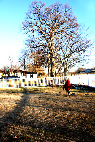 Nathan running, Fence Shadows