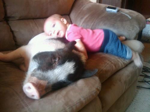 kids and pets.jpg 9