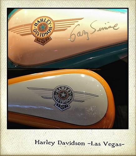 HARLEY DAVIDSON (LAS VEGAS)