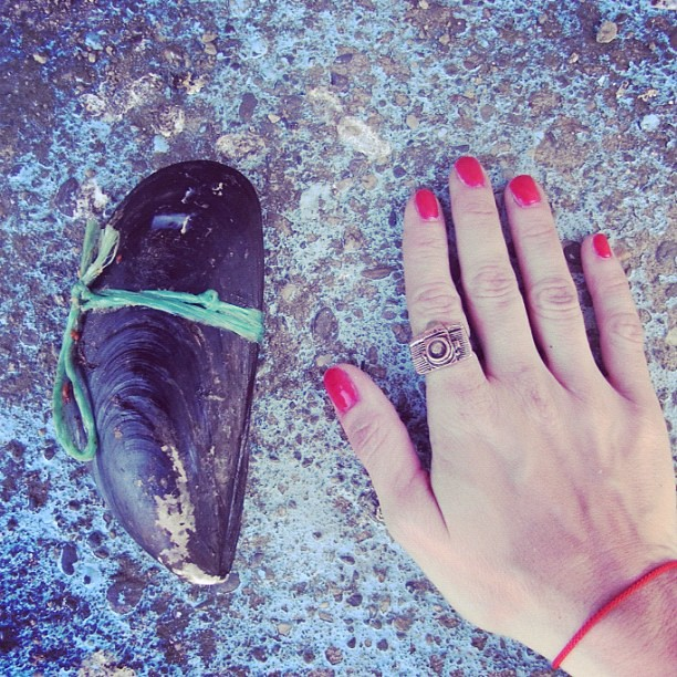 Cholga zapato