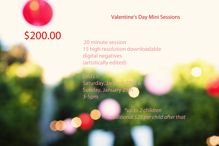 vdayminisessions