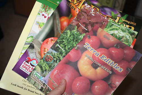 Horticulture Therapy: Seed Catalogues