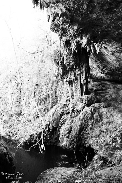 westcave5