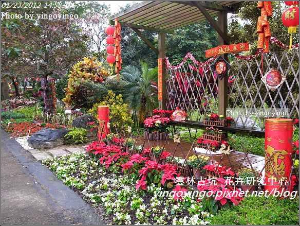 雲林古坑_花卉研究中心20120123_R0050647