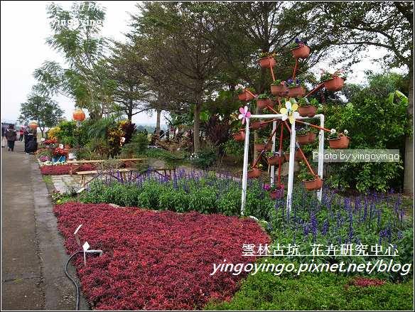 雲林古坑_花卉研究中心20120123_R0050658