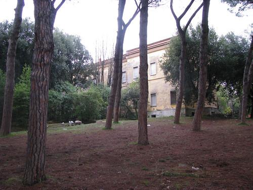 ospedale S.Maria della PietÃ