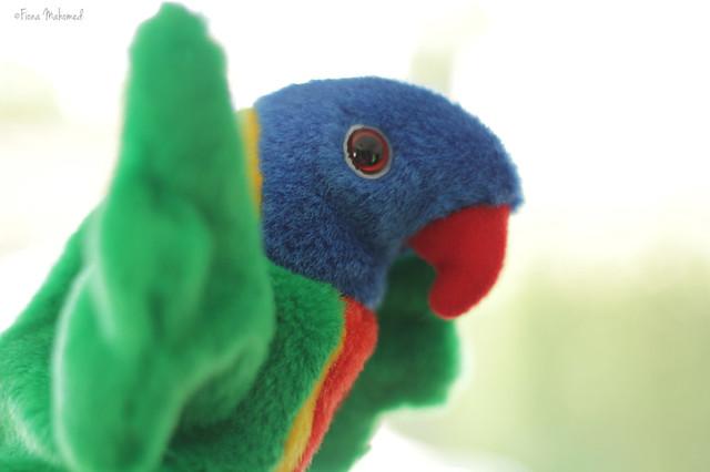 4/52 - Birds 2 - #FP2012