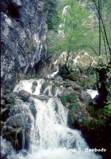 Morino (AQ), 1996, Riserva naturale guidata Zompo lo Schioppo.