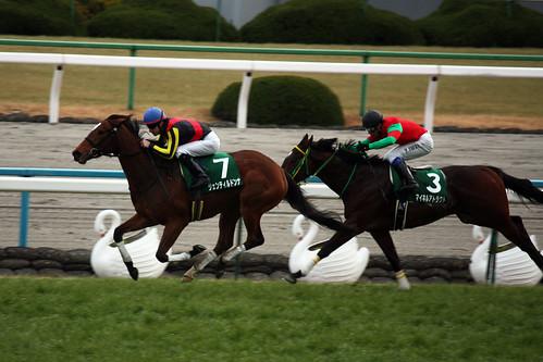 20120108 Shinzan Kinen