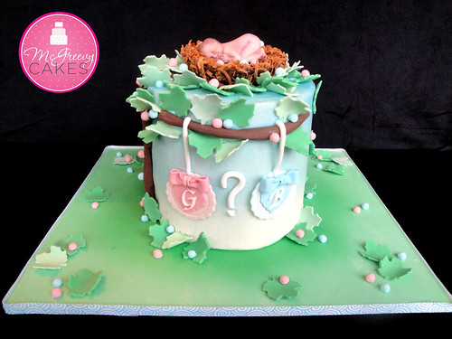 Baby Gender Cake