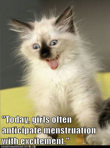 excited cat, quote reads Today, girls often anticipate menstruation with excitement.