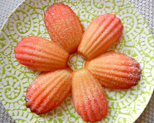 pink ombre madeleines