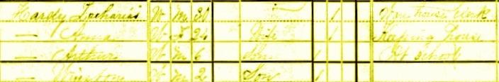Anna Mullin 1880 Census