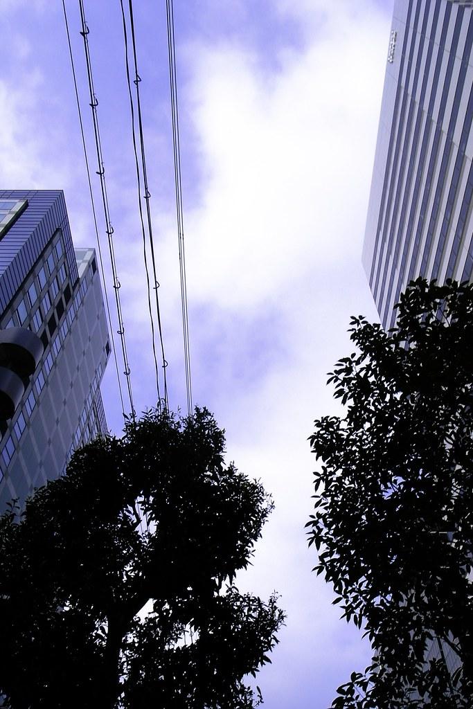 2012-02-08の空