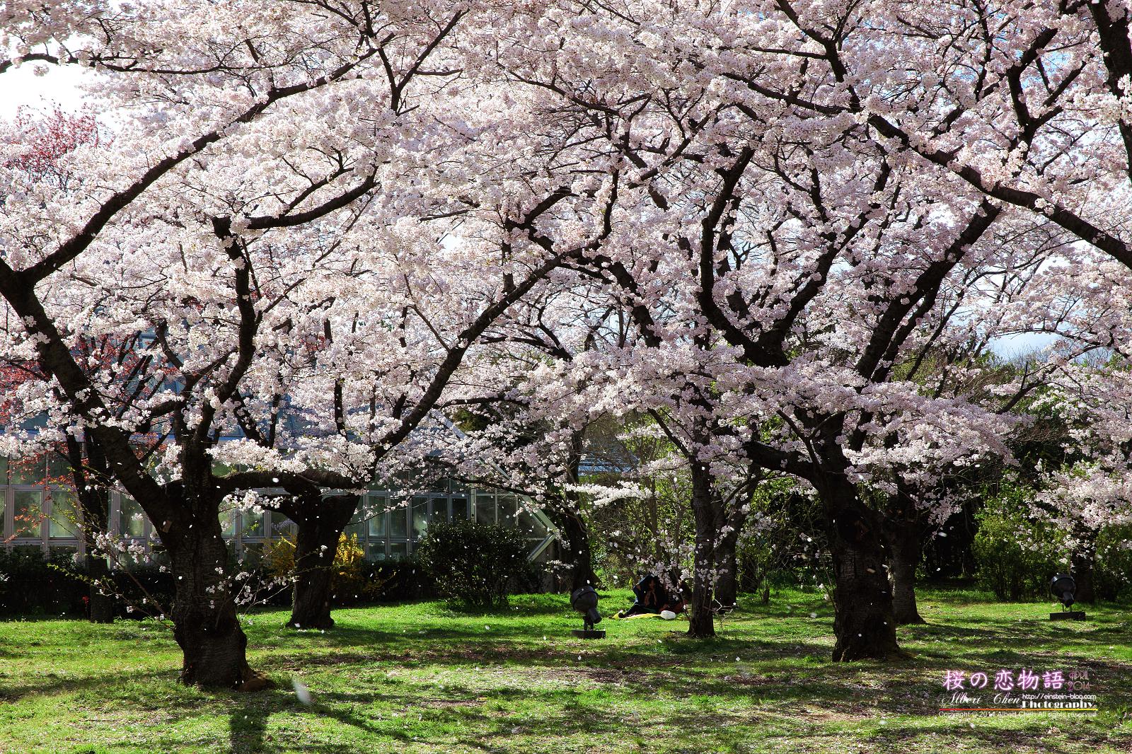 2014-04-04-14h49m28IMG_4793