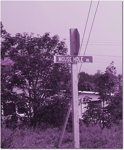 Hilarious road sign