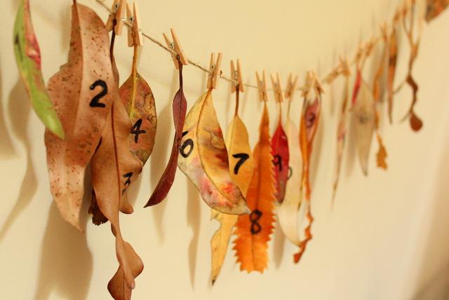 natural leaf advent calendar