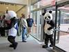 Panda ahhhhh the scarf!!!