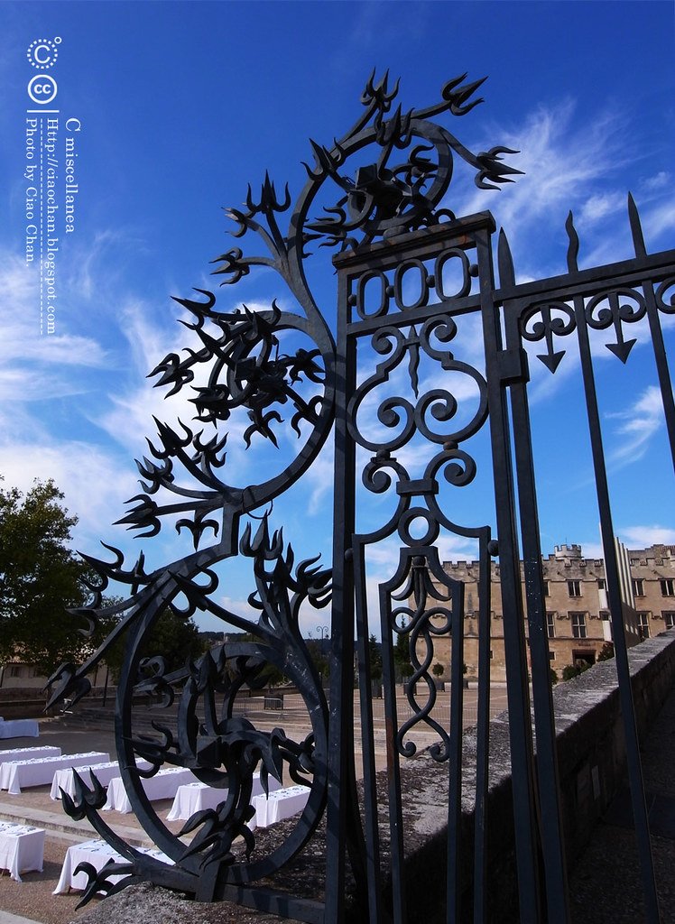 Bonjour Avignon~ 亞維農。香料草味兒的城市  R1041938