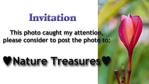 Invite pastel treasures