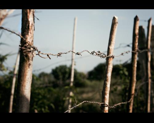 Cerca...nias by Rey Cuba