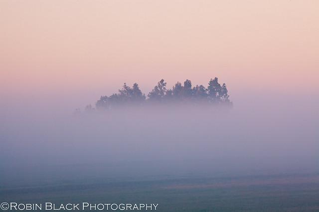 Sunrise and Fog, Sierra Foothills