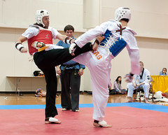 hapkido(0.0), tang soo do(0.0), striking combat sports(1.0), individual sports(1.0), contact sport(1.0), taekwondo(1.0), sports(1.0), combat sport(1.0), martial arts(1.0), sanshou(1.0),
