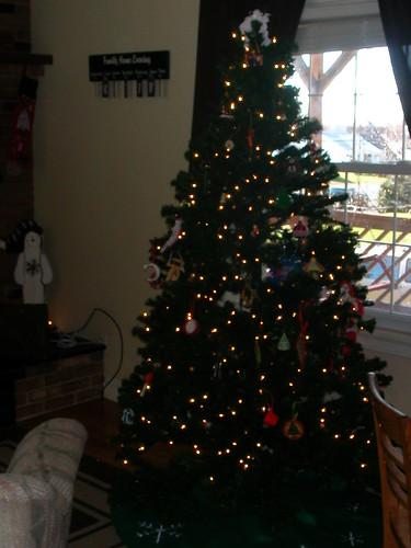 Nov 29 2011 Tree