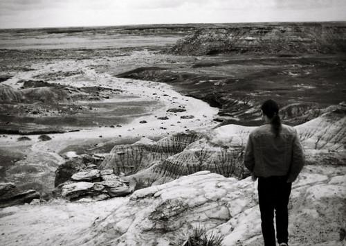 1990, Painted Desert/Petrified Forest by Juli Kearns (Idyllopus)