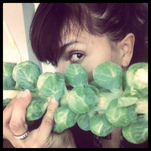 Stop the H8. Brussell sprouts are NOT yucky!! by Angel Aviles McClinton
