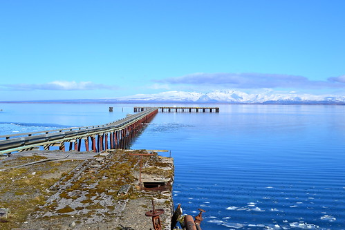 Cold Bay pier