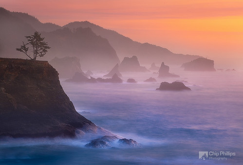 Misty Evening, Southern Oregon Coast