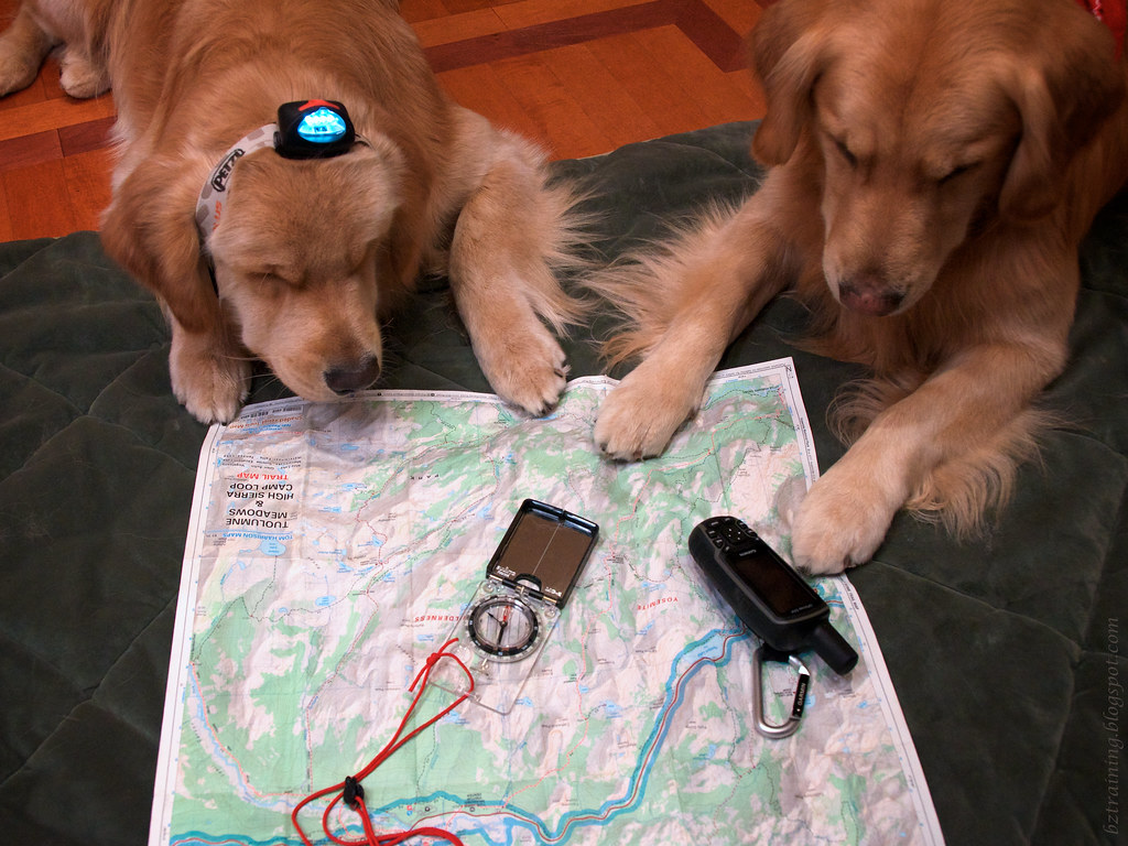 Studying the Map