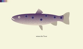 trout-71-winter chic