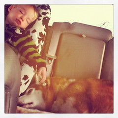 The children sleeping on the way back to the farm for Christmas...