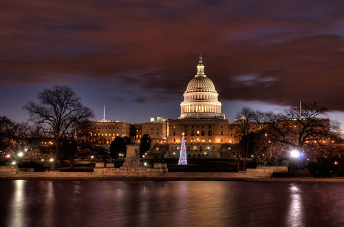 Nations Capitol building with a Christmas tree at night, Washington DC, USA